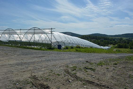 HEPWORTH FARMS | Weekly Farm Report